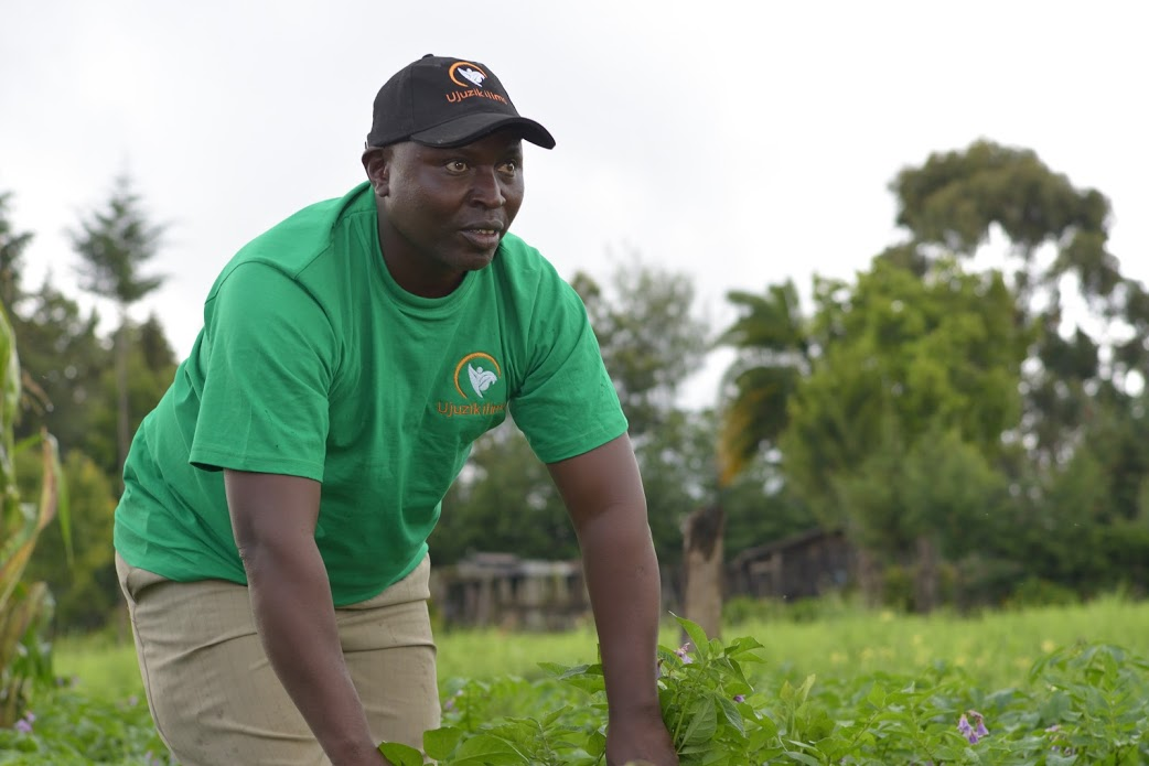 Multi-sided business models to digitize Africa's Agriculture